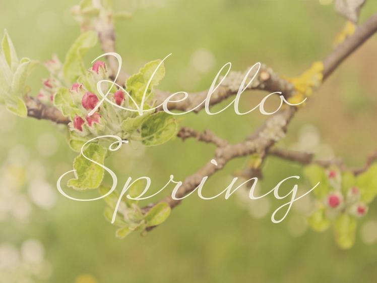 1024x768 hello spring
